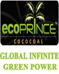 GLOBAL INFINITE GREEN POWER