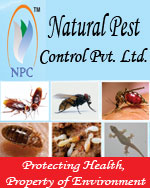NATURAL PEST CONTROL PVT. LTD