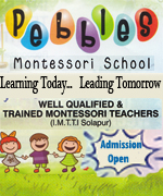 Pebbles Montessori School