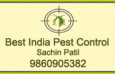 http://cp.solapurmall.com/homeflashimages/Best India Pest Control.jpg